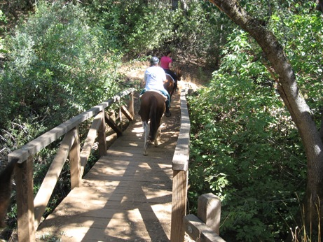 foresthill_trail_bridge