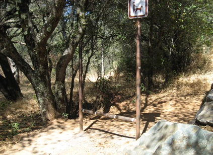 foresthill_trail_stepover