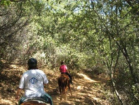 foresthill_trail_with_riders